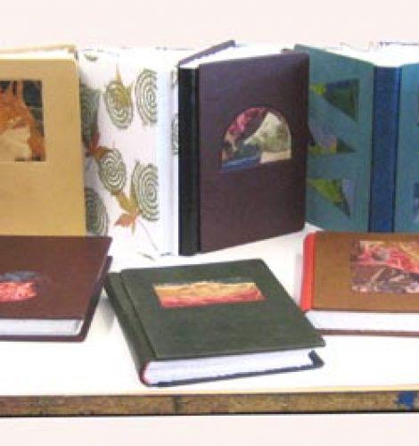All-twelve-books-completed
